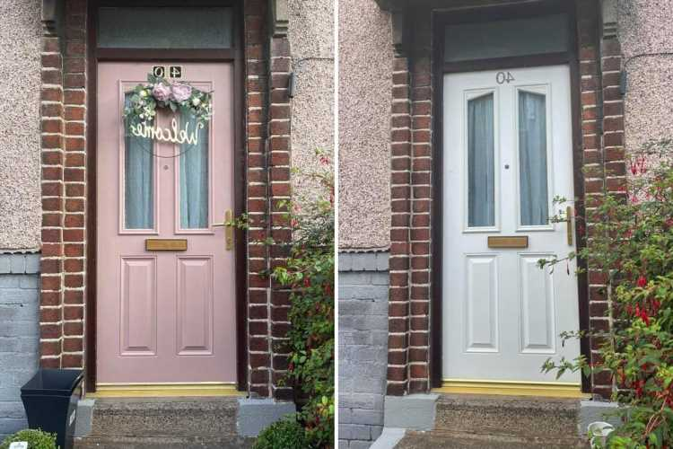 Savvy DIY fan who was quoted £900 for new front door revamps it herself for £20