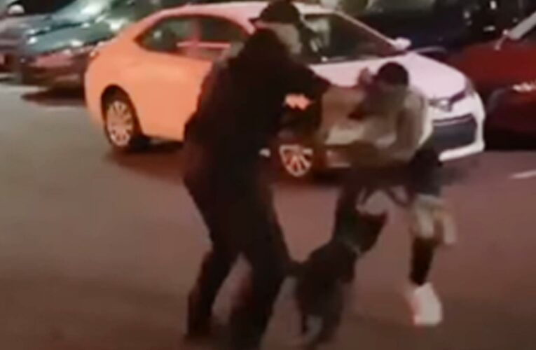 Security guard charged in dog attack outside of New Jersey restaurant