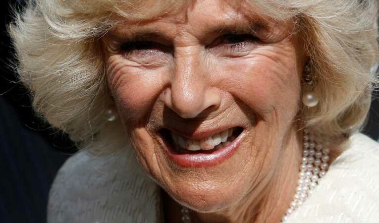 What Title Will Camilla Parker Bowles Have When Prince Charles Becomes King?