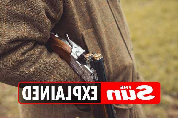 Who can own a firearm or shotgun in the UK?