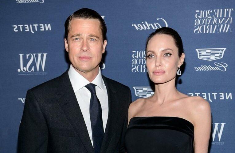 Brad Pitt Accused of Seeking 'Special Treatment' in Custody Battle With Angelina Jolie