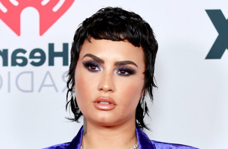 Demi Lovato Tried To Ask Out This Actress By Sliding In Her DMs