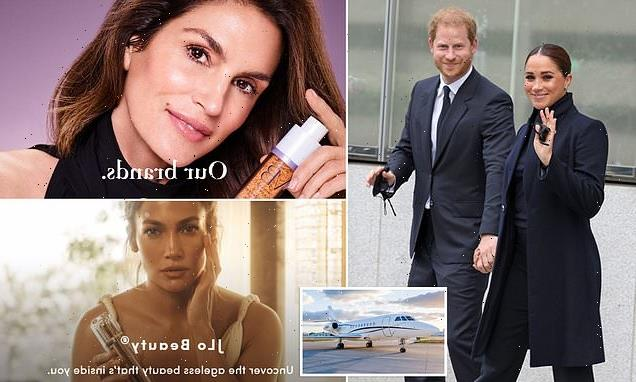 Meghan and Harry flew home in private jet owned by Guthy-Renker