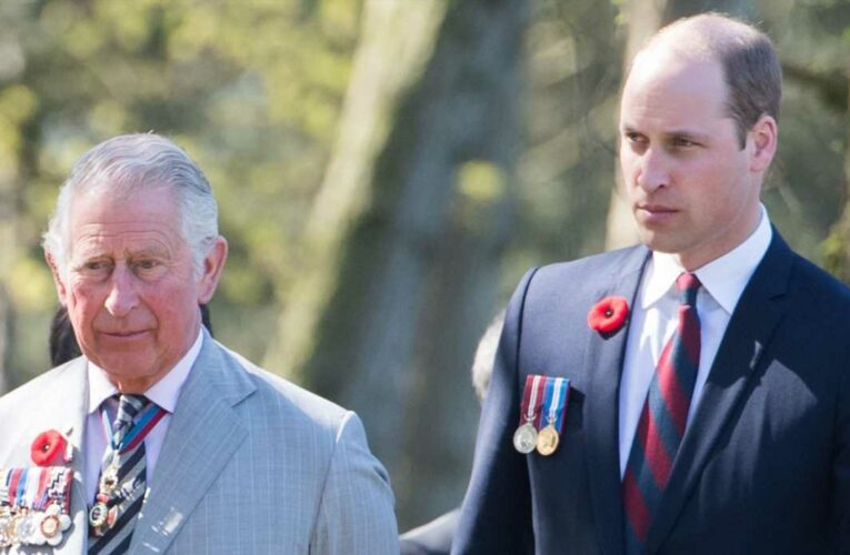 Soooo Prince Charles *Might* Step Aside and Give Prince William the Throne After the Queen Dies