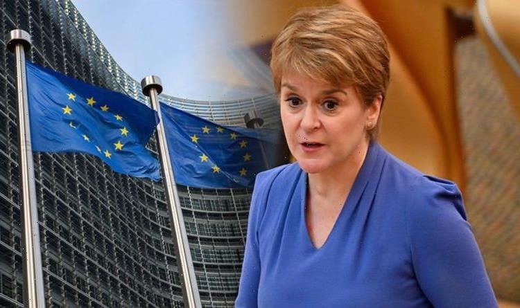 Sturgeon faces 'major problem' in bid to rejoin EU as economic plan torn to shreds