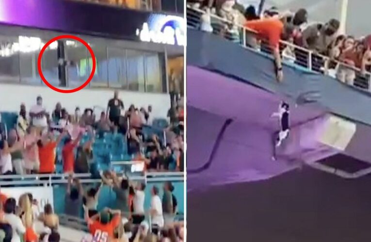 Terrifying moment cat falls from upper tier of stadium at college football game but survives after being caught by fans
