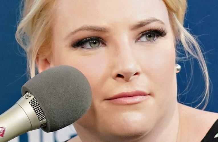 The Real Reason Meghan McCain Said She Doesnt Recognize Joe Biden