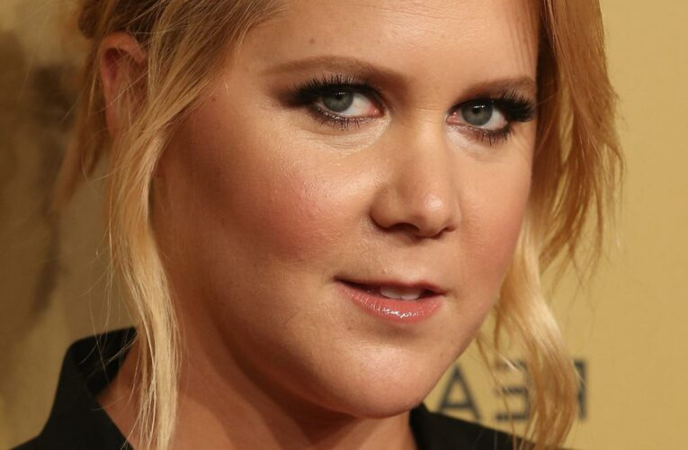 Times Amy Schumer Shut Down A Sexist Comment