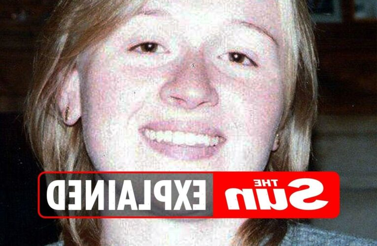 What happened to Amelie Delagrange and when was she murdered by Levi Bellfield? – The Sun