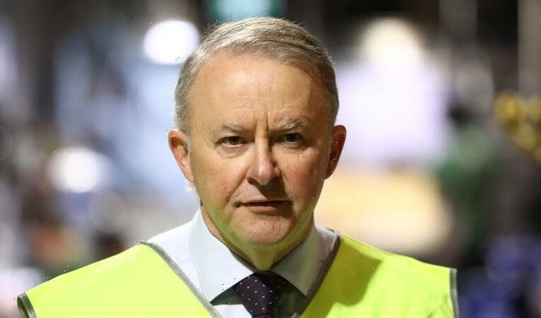 Albanese hasn't spoken to MP fronting Victorian branch-stacking inquiry