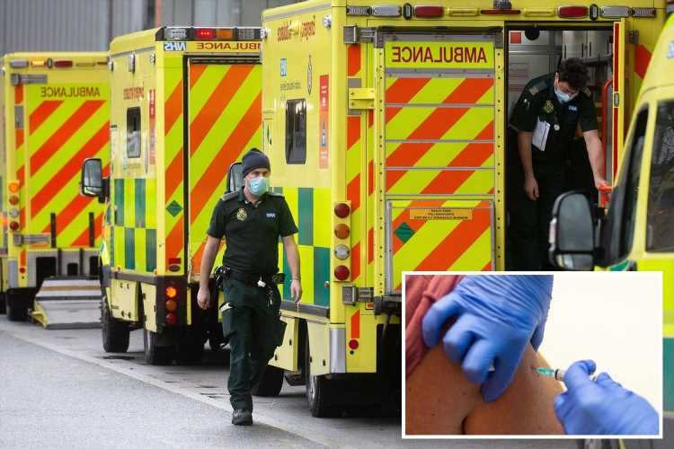 Brits to be hit by deadly explosion of flu AND Covid this winter as immunity drops due to lockdowns