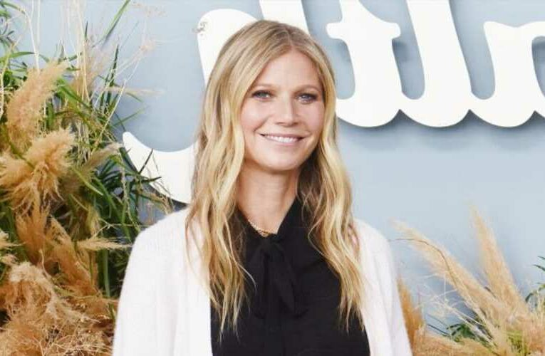 Even Gwyneth Paltrow's Son Isn't Shocked by Her Vibrator Line
