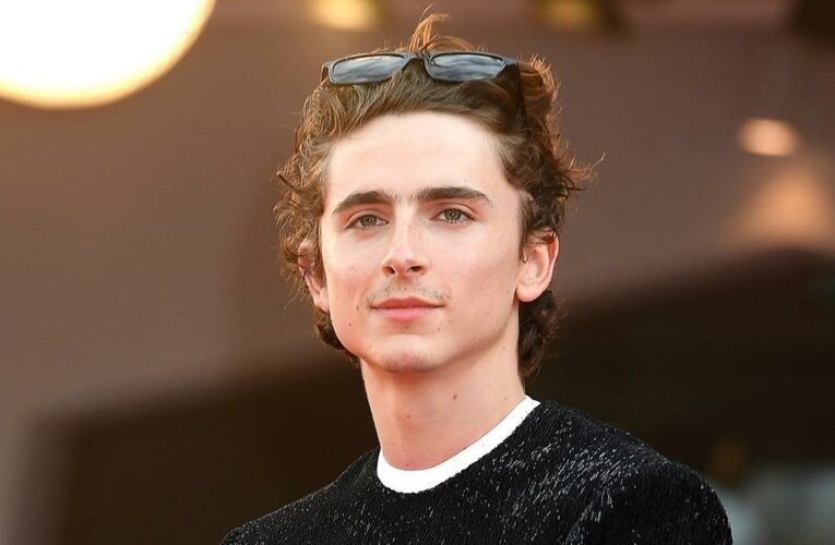 First Look! Timothee Chalamet Is Willy Wonka in New 'Wonka' Teaser