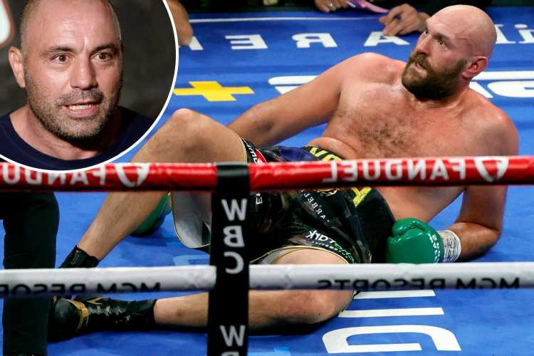 Tyson Fury's 'long count' after being floored by Deontay Wilder was 'an error or corruption' claims UFC legend Joe Rogan